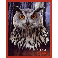 Puzzle I AM - OWL - Sowa