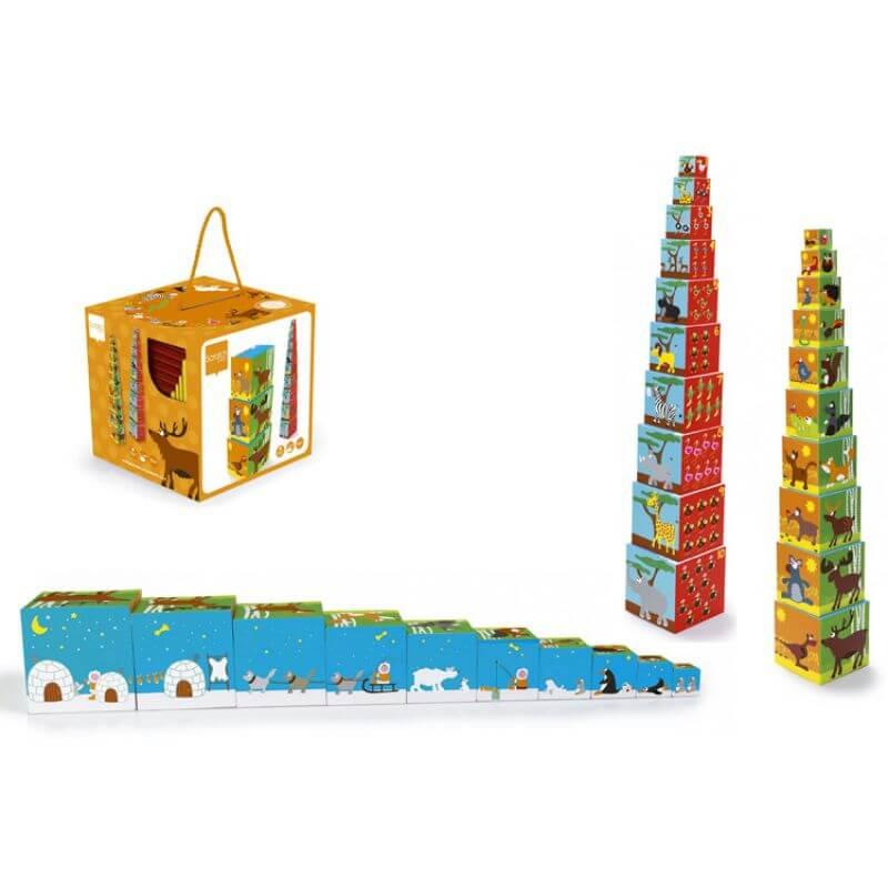 Piramida Edukacyjna - Safari
